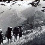 5. Работа федерации туризма и турклубов в начале 1980-х годов